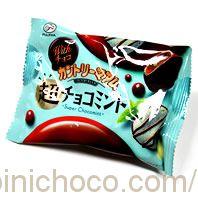 カントリーマアム 超チョコミントカロリー・価格詳細情報