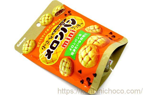 小さなチョコチップメロンパンクッキーミニ